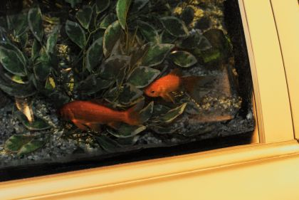 Golden Fishes Car, 2010